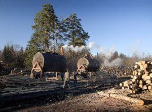 древесный уголь в сельском хозяйстве